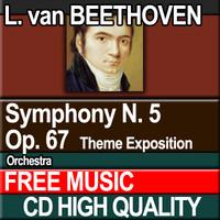 L. van BEETHOVEN - Symphony N. 5 Theme Exposition