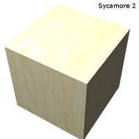 Wood - Sycamore 2