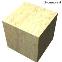 Wood - Sycamore 4