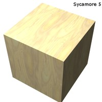 Wood - Sycamore 5