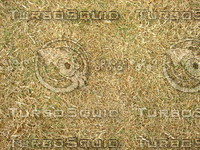 Lawn Carpet cz3 137