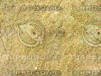 Lawn Carpet cz4 045