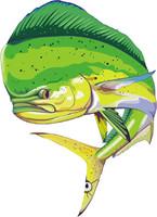 fish 12.ai