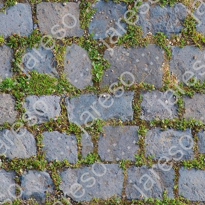 pavement_grass_006_ts_preview.jpg