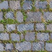 pavement_grass_006.jpg