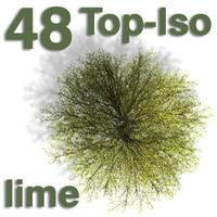 Top Views - lime