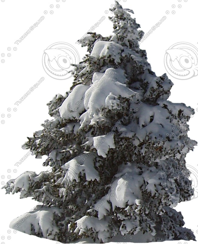 wintertree03.psd