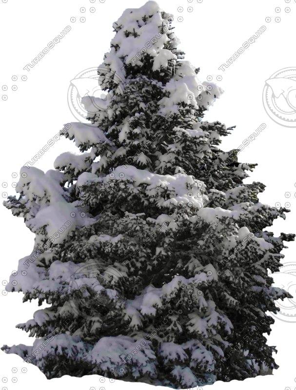 wintertree06.psd