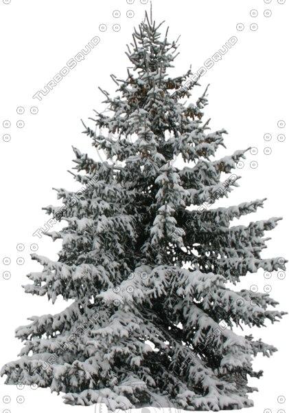 wintertree12.psd