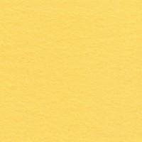 yellow1024.jpg