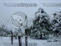 Snow Tree 20091112 109