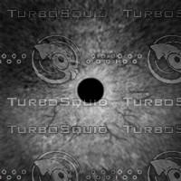 Dino_Round_Pupil_Style_Eye_SPEC_DIFF_JPEG.jpg