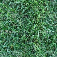 Grass tilable .zip