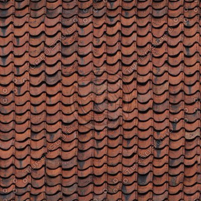 Roof_11_1.jpg