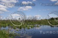 SPX_Wetlands001