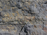 Surface Rock 005.JPG
