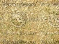 Lawn Carpet cz4 046