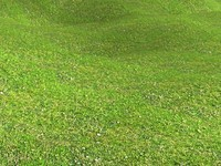 Spring grass 3DM tilable material