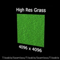Professional High Resolution Grass Texture