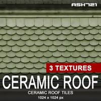 Ceramic roof tiles 7
