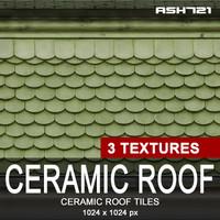 Ceramic roof tiles 6