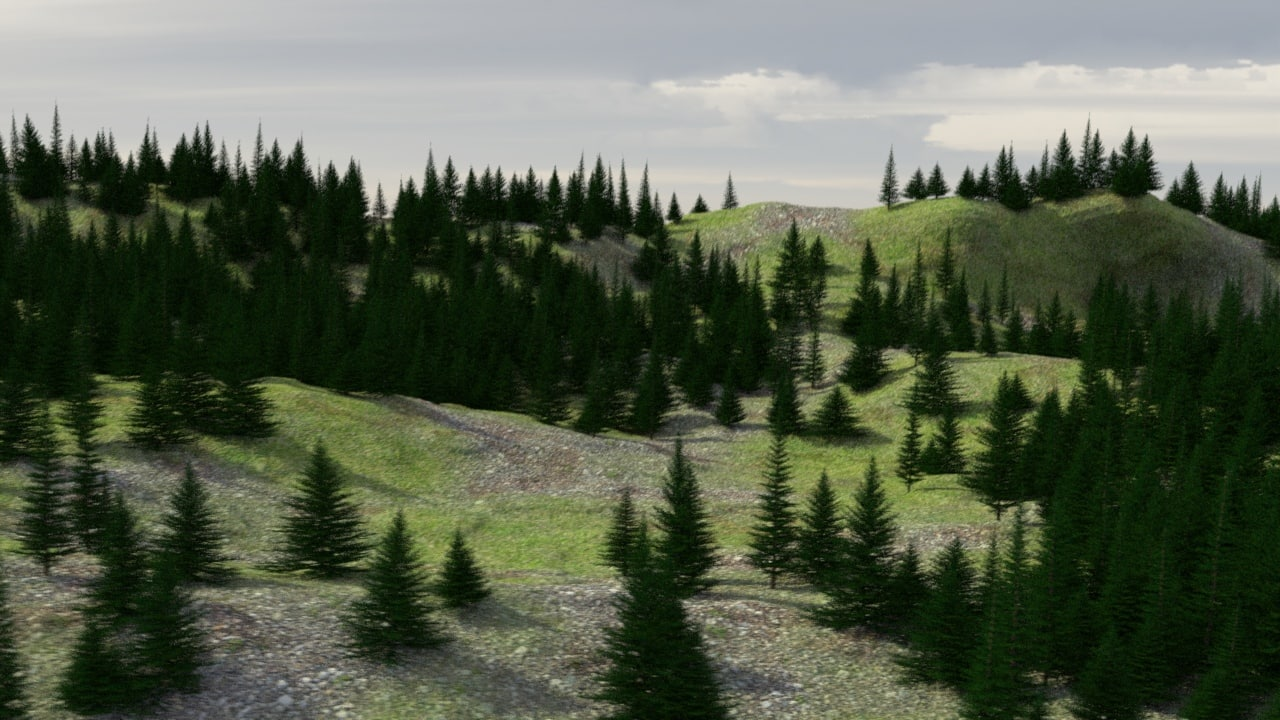 3D Evergreen Tree and Forest.jpg