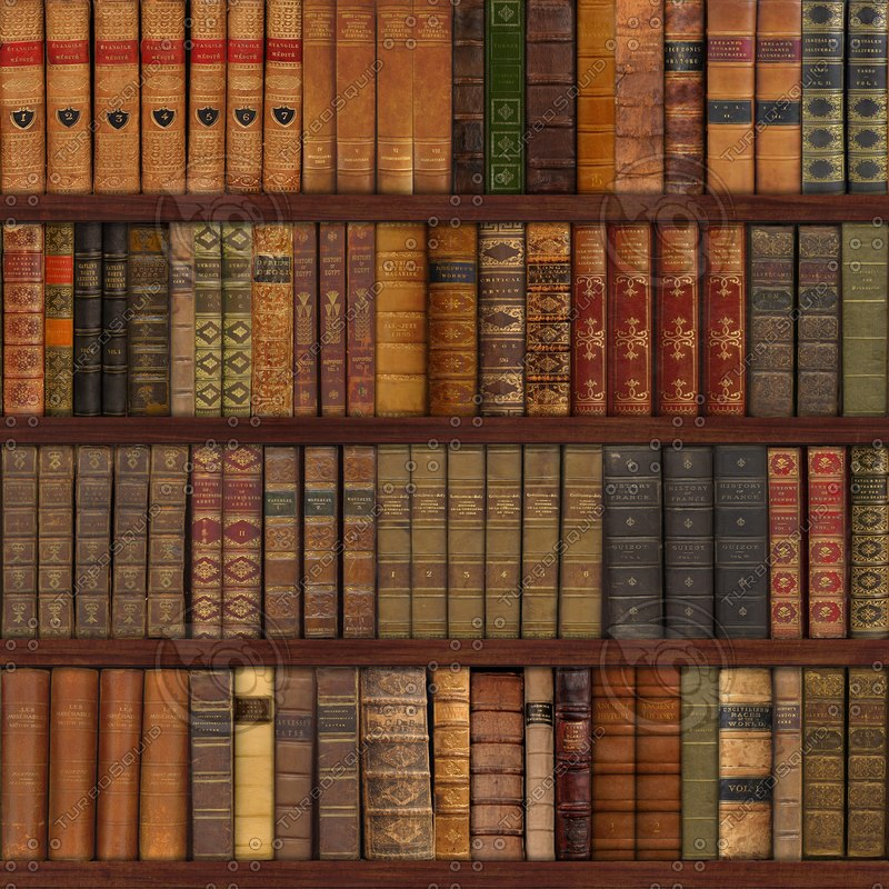 86_books_on_shelves.png