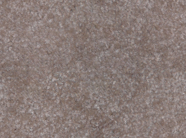 CARPET - BEIGE.jpg