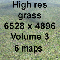 High res Grass Volume 3