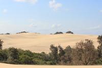 Dunes 2 (JB HI REZ)