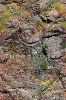 craggy_rocks