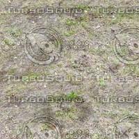 Dry grass tileable texture #1
