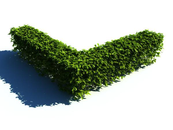 hedge-corner-1.jpg