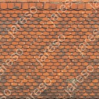 older_tile_roof003.JPG