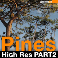 Pines High Res Part 2