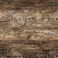 rotten-wood-01.jpg
