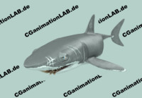 Shark_CGanimationLAB.de.rar