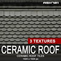 Ceramic roof tiles 10