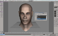 FaceFX Plugin for Softimage