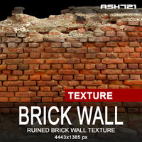 Ruined brick wall