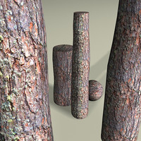 Bark on an pine tree trunk 3DM material