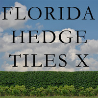 Florida Hedge Tiles X