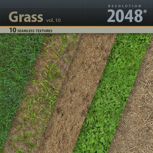 Title_Grass_vol_10.jpg