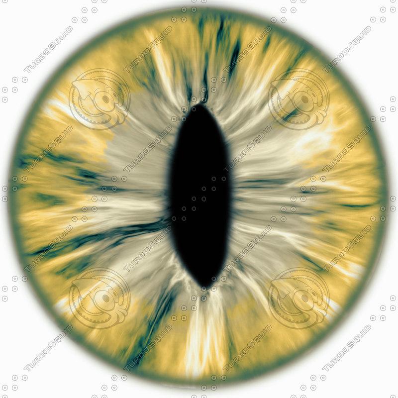 eye_textureorange.jpg
