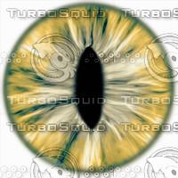 Amber Iris Texture