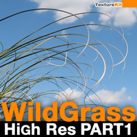 Wild Grass High Res Part 1