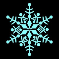 SPV_Snowflake007