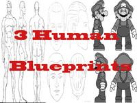 Human Blueprint