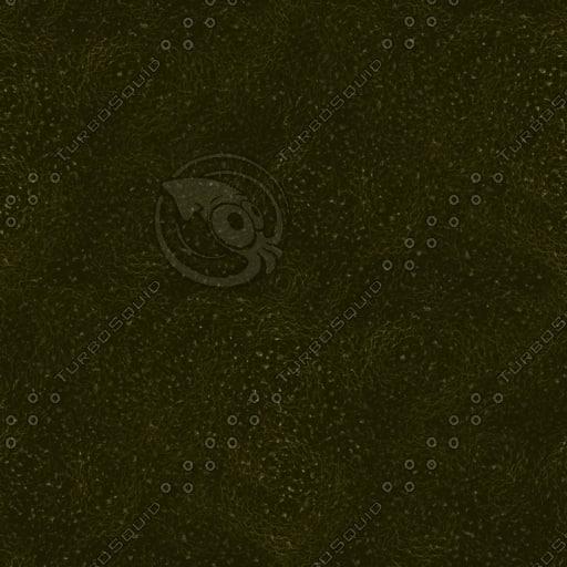 bfg_stone_texturesmall.jpg