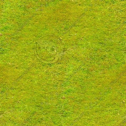 grass-tiled-512-2.JPG